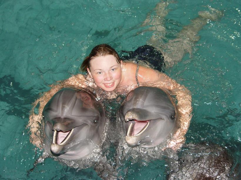 Подарки плавание с дельфинами 883